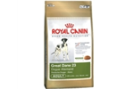 Royal Canin Grand Danois, 12 kg