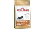 Royal Canin Gravhund Junior, 1.5 kg
